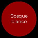Pia Alvero Reportajes Navidad 2020 Bizkaia - Paquete Bosque blanco